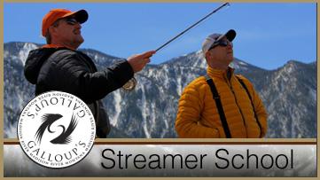 Streamer School
