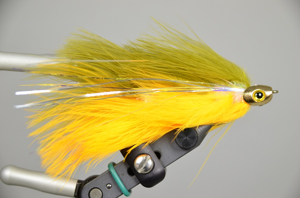 galloup's barely legal fish skull olive yellow 4