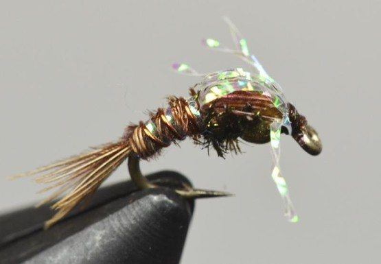 trina's bubble back emerger