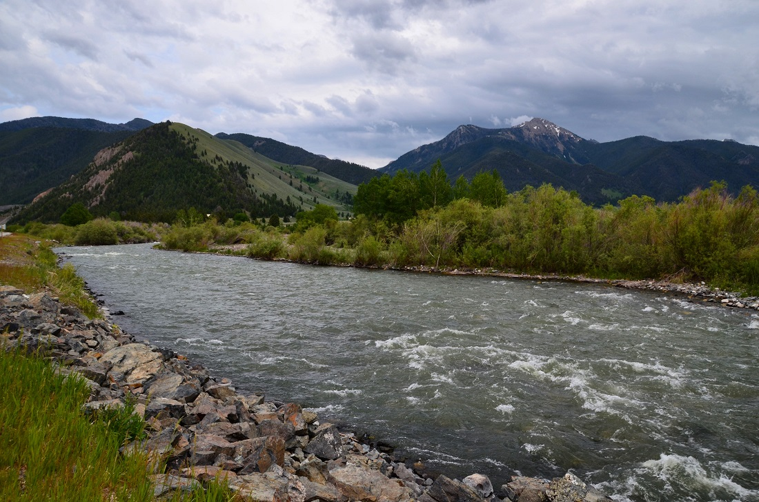 Madison river fishing report guided fly fishing madison for Upper madison fishing report