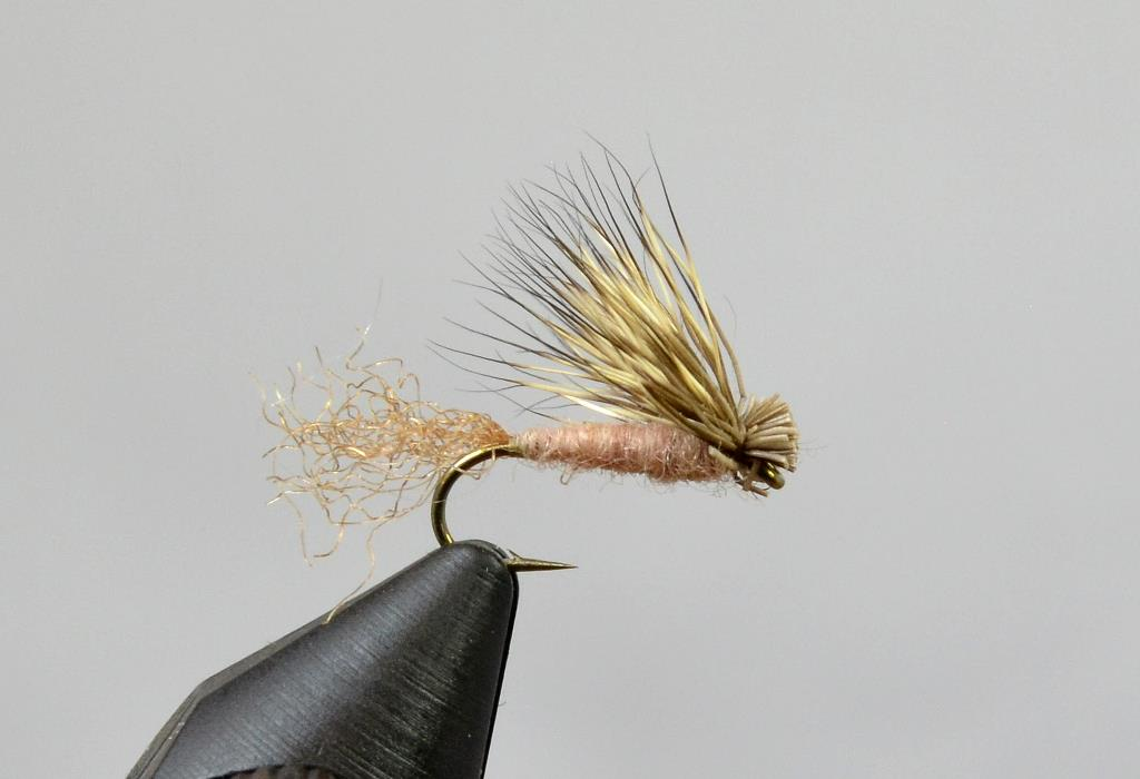 x caddis tan