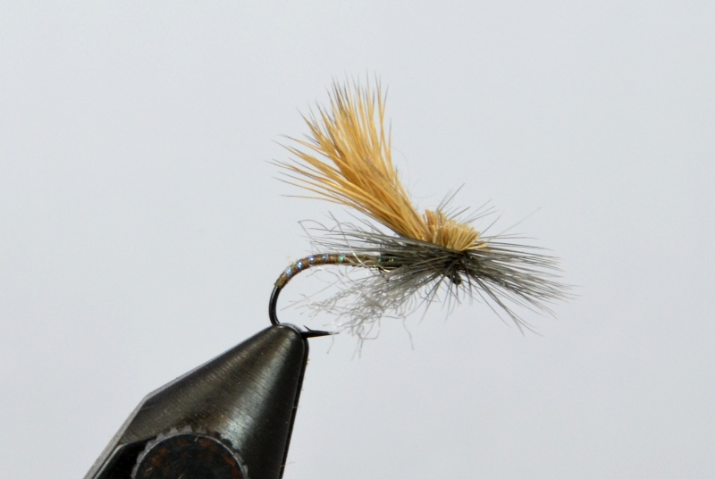 mercer's missing link caddis